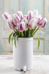 Bouquet of white and violet tulips