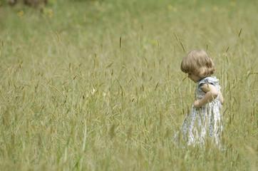 Little girl in a summer field