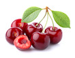 Ripe cherry in closeup - 73289402