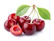 canvas print picture - Ripe cherry in closeup