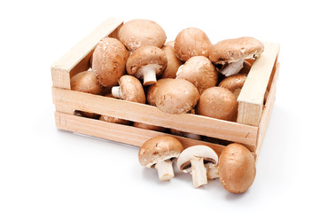 Cultivated brown mushrooms in wooden crate