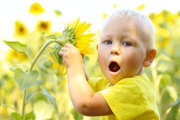 funny little boy in sunflowers
