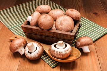 Fresh brown mushrooms