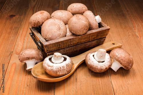 canvas print picture Fresh brown champignons