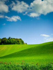 Curving Hill under Blue Sky