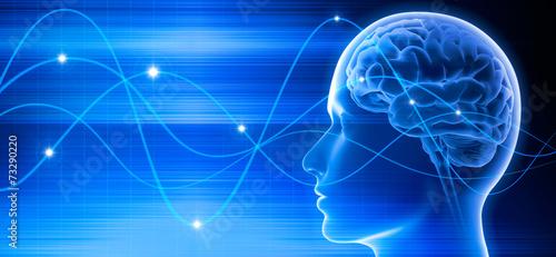 Gehirn - Schwingungen 3 - 73290220