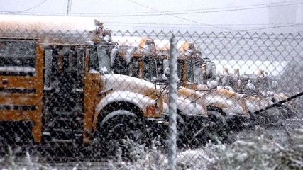 School Bus, Winter, Snow, Education