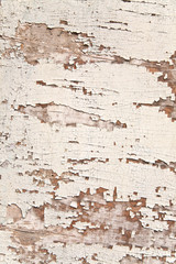 wooden surfaces with old paint