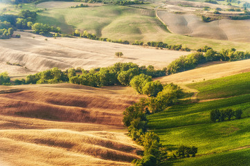 Rural landscape of green Tuscan, Italy