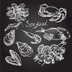 Hand drawn seafood on a black background