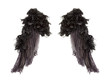 Dark angel wings - 73294896