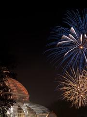 Fireworks light up Sefton Park Palm House, Liverpool,UK