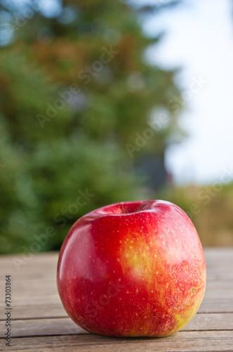 canvas print picture Ein Apfel