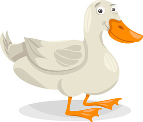 duck farm bird cartoon illustration