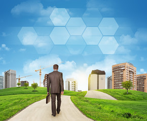 Businessman walks on road. Rear view. Buildings, grass field and