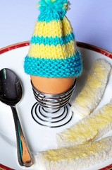 Boiled egg with egg cosy © Arena Photo UK