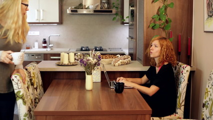 Couple of women with laptop in dining room at home.