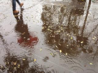 Reflection in Rain Water, riflesso nell acqua sotto la pioggia