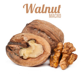 bunch walnuts isolated