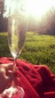 canvas print picture - Sekt in der Sonne