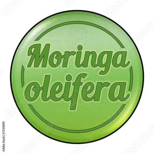 canvas print picture bg10 ButtonGrafik - Moringa oleifera Button - RetroDrops - g2550