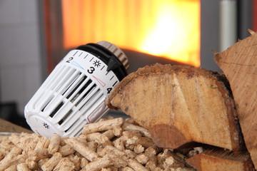 Ofen mit Thermostat und Holz