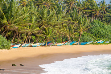 Tropical beach with palm trees and boats in Mirissa, Sri Lanka