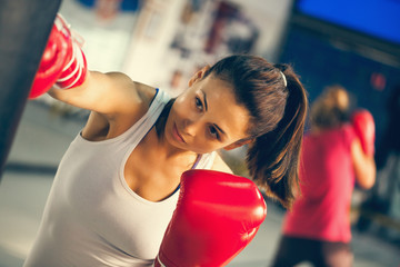 Female Boxer At Training