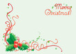 Vector christmas background  with leaves and berries of holly