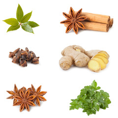 collage of different spices and herbs isolated on white backgrou