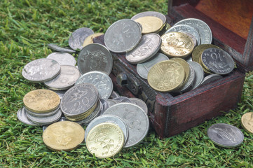 Treasure chest with coins and green grass