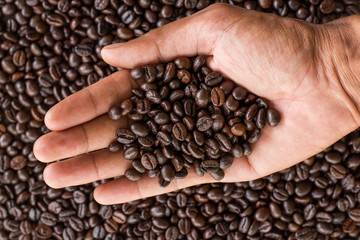 hand hold coffee beans and coffee beans background