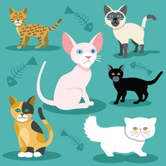 Vector cats flat icons Set