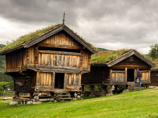 Old traditional Norwegian architecture with grass on the roof.