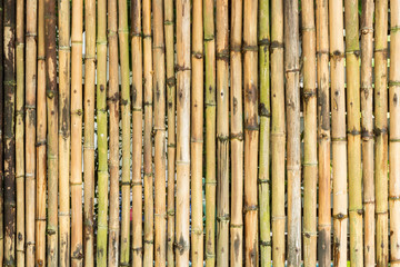 bamboo wood fence wall background