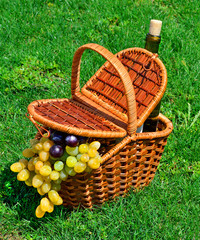 picnic basket with ripe grape, bottle of wine on the grass