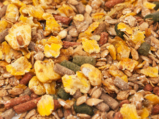horse sportive muesli with corn flakes background