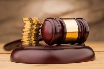 judge gavel with money   closeup
