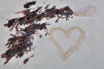 Coeur dessiné sur le sable près d'algues