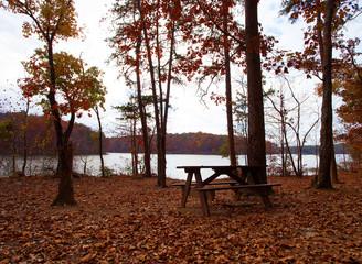 Remote picnic bench