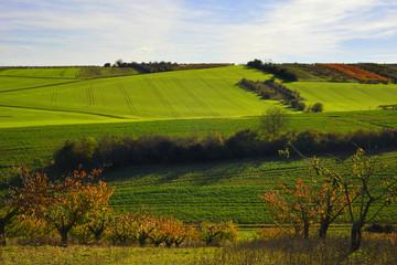 Patchwork vallonné des cultures de l'Yonne, Bourgogne