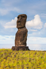 Lone moai in the Easter island (Chile)