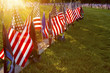 Sunlight on Soldiers Graves at Gettysburg - 73331082