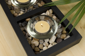 Scented Candle with Rocks and Green Plant Diagonal