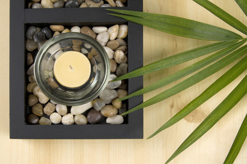 Scented Candle with Rocks and Green Plant