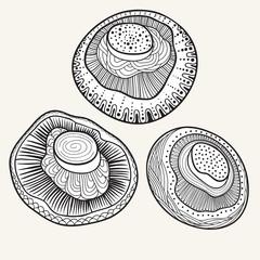 Mushrooms set