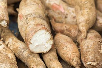 tubercules de manioc