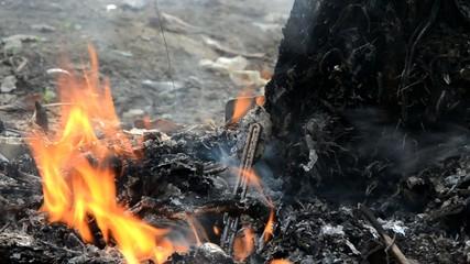 burn garbage