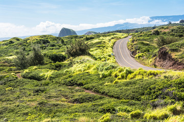 The road in the green, Maui