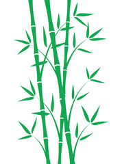 Green bamboo stems on white background